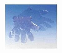 Plastic wegwerphandschoenen per 100st.