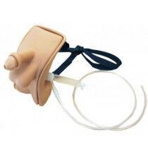 Draagbaar katheterisatietrainer mannelijk per stuk